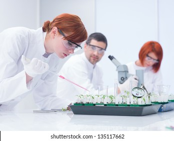 close-up of a student in a chemistry lab  doing experiments on plants under a teacher supervising and another student on the background analyzing