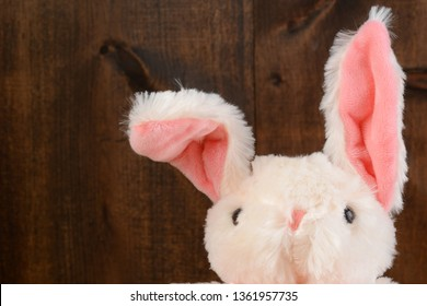 closeup stuffed easter bunny with floppy ear