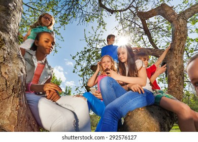 Close-up of teenagers sitting together on tree