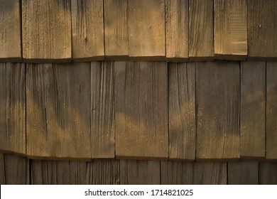close-up texture of the brown wood surface