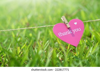 Close-up thank you card in the grass outdoors