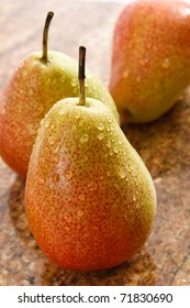 Closeup of three fresh, ripe Forelle pears covered in water droplets