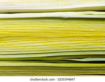 A closeup of three slices of the leek lengthwise cut