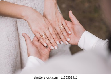 Closeup top view of beautiful bridal hands in hands of groom. Pink nude manicure with soft shimmering at nails of young woman. Horizontal color photography.