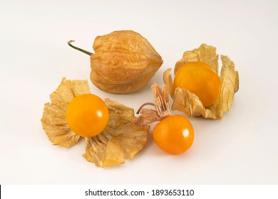 Closeup top view of harvested ripe golden Cape Gooseberry, Rasbhari, Physalis Peruviana ,Peruvian Groundcherry ,Goldenberry,  displayed isolated  against white background indoors