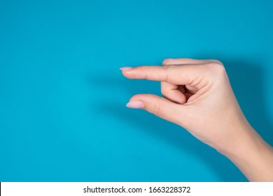 Closeup top view horizontal photography of female hand forming gesture Little bit. Empty space between two fingers of woman. Isolated on bright blue background.