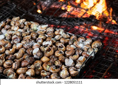 closeup of a tray of caragols a la llauna, a recipe of snails typical of Catalonia, Spain, being cooked on a firewood