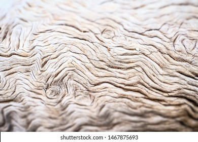 Close-up of a tree trunk, wooden background