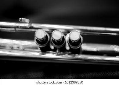 Close-up of trumpet valves.