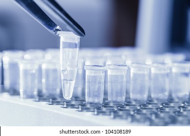 Close-up of tweezers loading test tubes with sampled DNA for polymerase chain reaction. Blue toned image