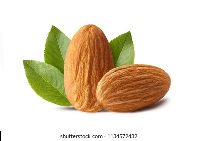 Close-up of two almonds, isolated on white background