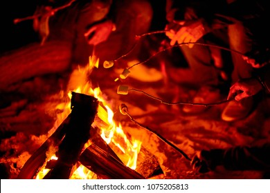 Close-up of unrecognizable tourists enjoying camping and roasting marshmallows on campfire at night