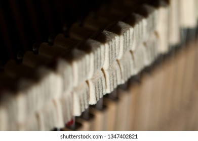 Closeup of upright piano dampers