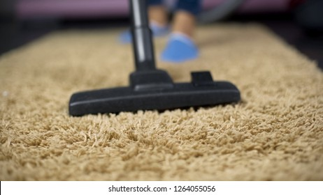 Close-up of vacuum cleaner sweeping dust from expensive rug, household hygiene