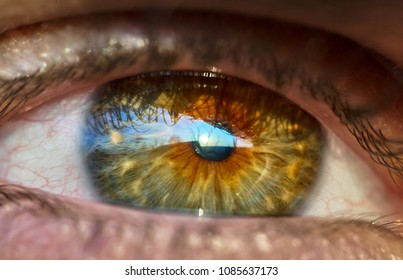 Closeup of vibrant colored eye of a man