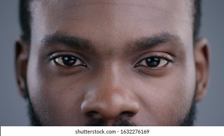 Close-up view of afro-american man eyes blinking and looking straight. Detailed portrait of confident and calm black guy staring at camera.
