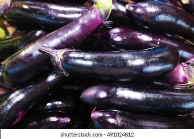 Closeup view of asian eggplants. Colorful eggplants. Eggplant background. Pile of eggplants at Indian market. Purple eggplants. Eggplants background. Small eggplants. Small asian purple eggplants