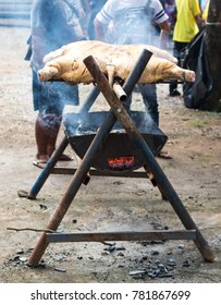 Close-up view of the back of a pig in a steaming grill on a steel stove in a rural Thai countryside.