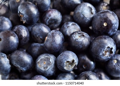 Close-up view of blueberries background, close up, tasty and sweet