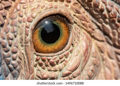 A closeup view of a colorful educational dinosaur eye, seen at an outdoor prehistoric amusement park, realistic sculpture seen in detail.