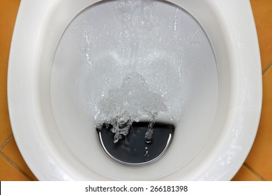 fat man sitting on toilet isolated stock photo edit now 45164569