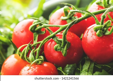 close-up view of fresh ripe tomatoes with arugula on table