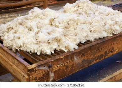 Close-up view of fresh sheared wool in a farm
