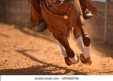 The close-up view of galloping horse on the arena on the red clay