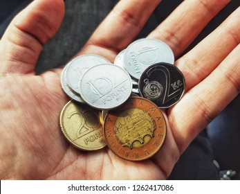 close-up view of a hand holding a Hungarian Forint coins