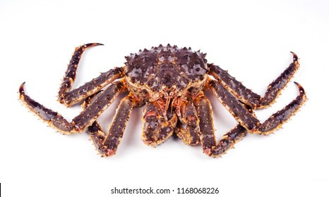 Close-up view of king crab isolated on white background.