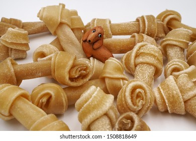 Closeup view of little dog made from leather sits among knotted bones or rawhide or dog bone for puppy in white background ,feeling excite ,surprise, enjoy , fulfilled in heaven of dog