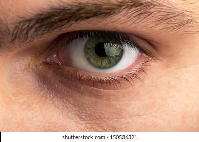 Closeup view of male eye