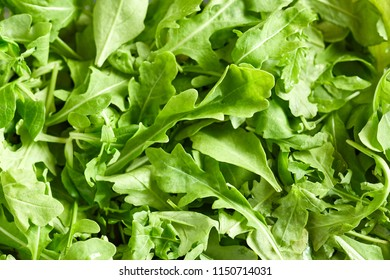 Close-up view of mix of variety, healthy and fresh green salad