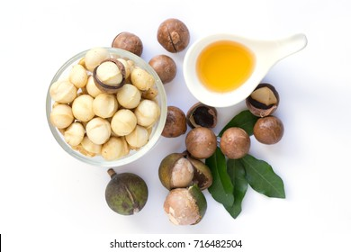 Closeup view of natural macadamia oil and Macadamia nuts, Healthy food