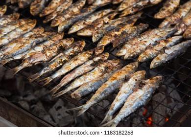 Closeup view on traditional catalan dish frying sardines