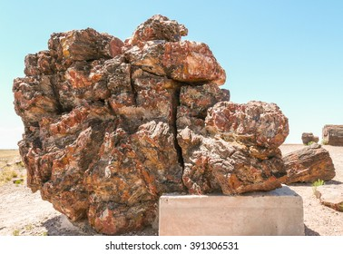 Closeup view of petrified wood in Petrified Forest National Park