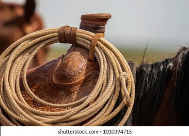 Closeup view of a portion of a saddled horse showing the saddle horn with a lariet hanging from straps around the horn. The Brown leather saddle and a portion of the horses Black mane are visible.