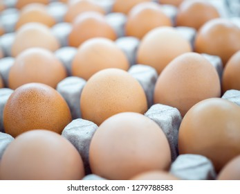 Close-up view of raw chicken eggs in egg box. Chicken eggs background.