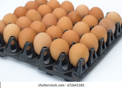 Close-up view of raw chicken eggs in egg box on white  background.