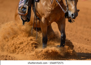 The close-up view of a rider stopping a horse in the sand.