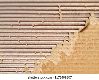 close-up view of a ripped cardboard. Packaging and cardboard box