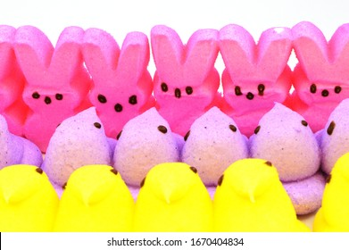 A closeup view of some Easter marshmallow treats.