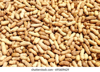 Closeup view of steamed golden groundnuts. Groundnut is scientifically known as Arachis hypogaea.