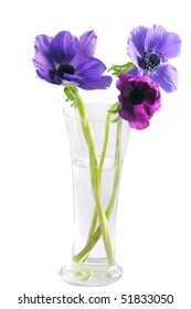 Close-up of violet flowers in a vase on white background