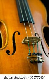 Closeup of violin.