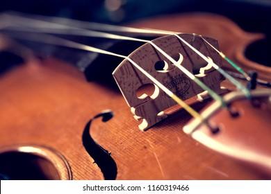 Closeup Of Violin Bridge