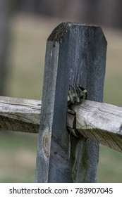 Close-up of Weathered  Wooden Rail Fence Post