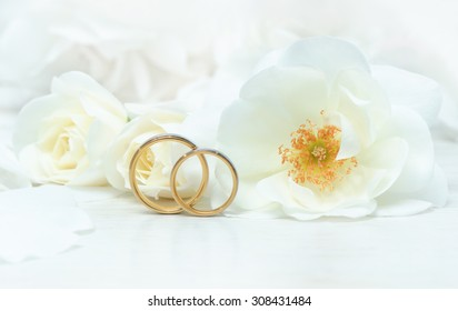 Close-up of wedding rings on background of roses/Wedding Rings/Wedding Rings