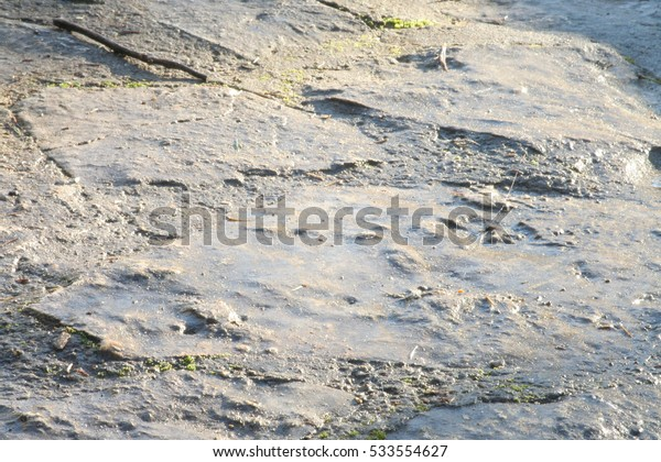 Close-up of wet stone slabs in a sunny day.