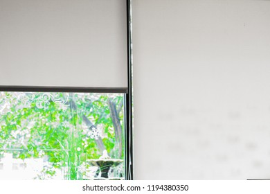 Closeup white curtain, Louvers , shade, blind or shutter background open see the green color of trees blurred.